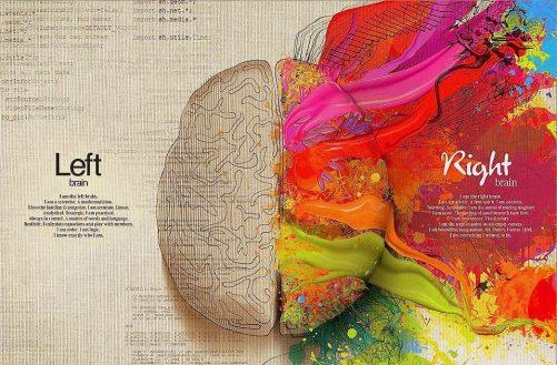 brain23