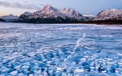 Frozen-methane-bubbles-in-Alberta-Canada.-The-30-Most-Amazing-Photos-Of-Frozen-Things-In-Honor-Of-The-Coldest-Morning-Of-The-21st-Century